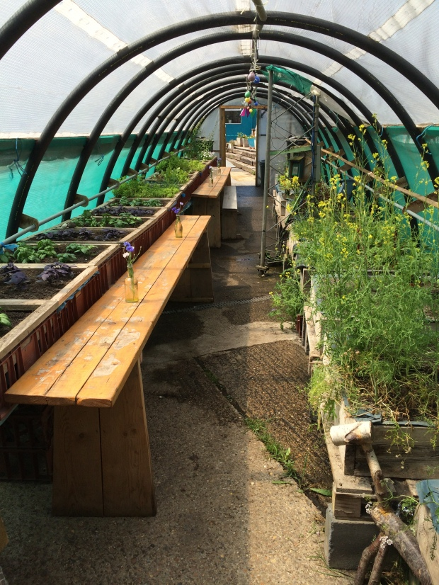 Multifunction growing and seating poly tunnel