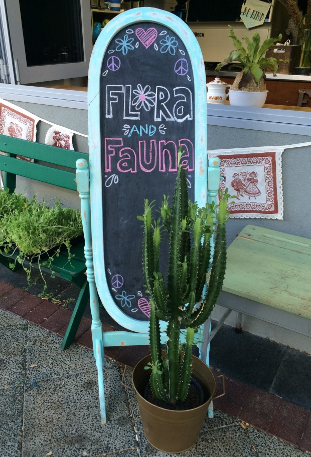 Loving the chalkboards, furniture and cacti